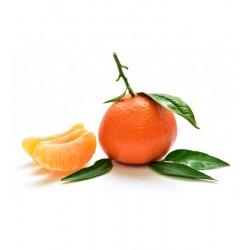 Mandarina clementina 1Kg